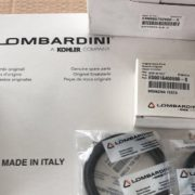 8345658_piese-motor-lombardini-2-cilndri_6